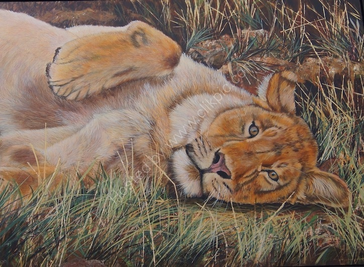 Young lion cub reclining on grass