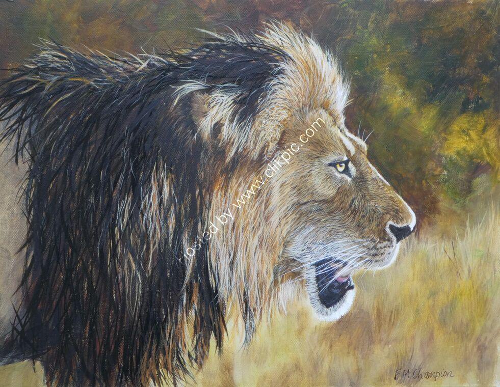 Profile of lion in bush