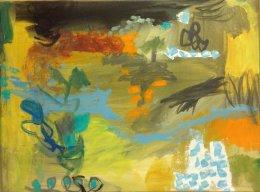 Fragile-Landscape