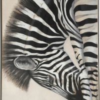 Zebra arch