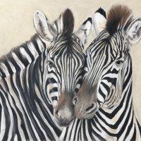 Zebra nibble