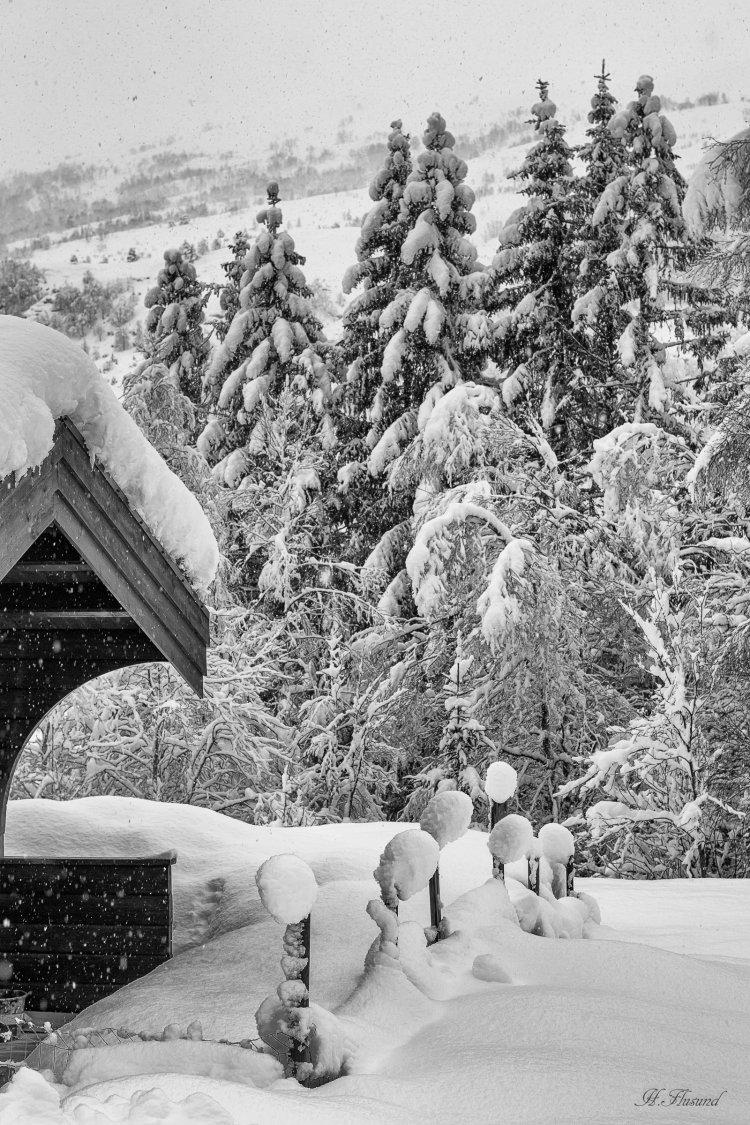Snøfall