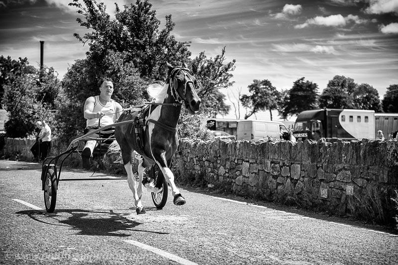 Cahermee Horse Fair