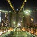 New York Feb 2015_4