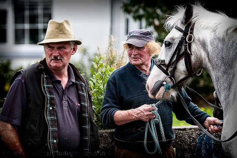 Tallow-Horse-Fair-2014 0084b