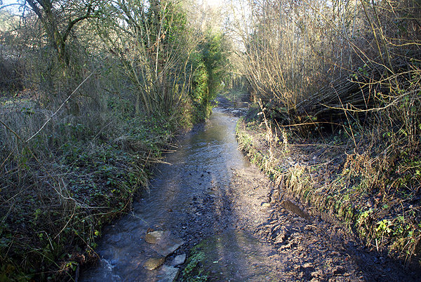 Lower Bach Ford