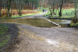 Cannock Chase Ford