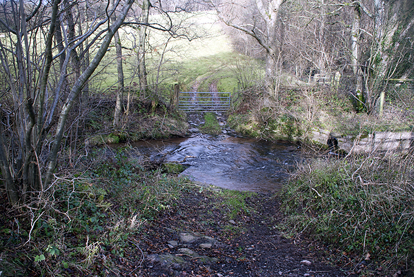 Craswall Ford