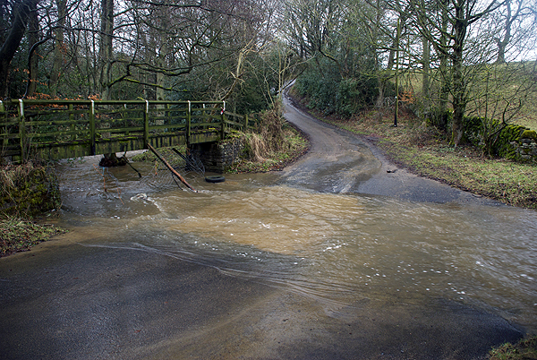 Hamsterley Ford 2