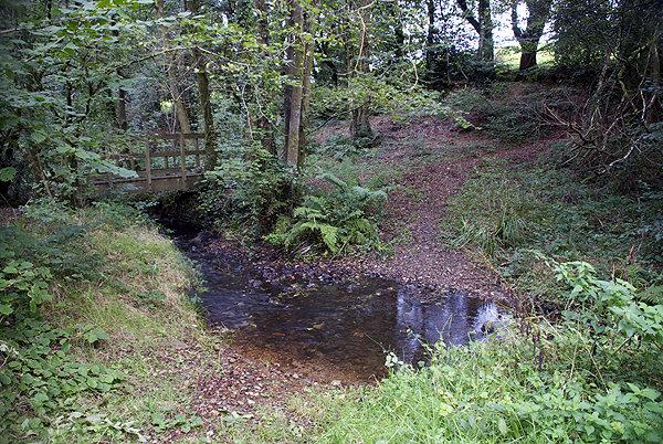 Dunkeswell Devon