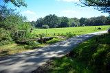 Burley Lawn Ford 2