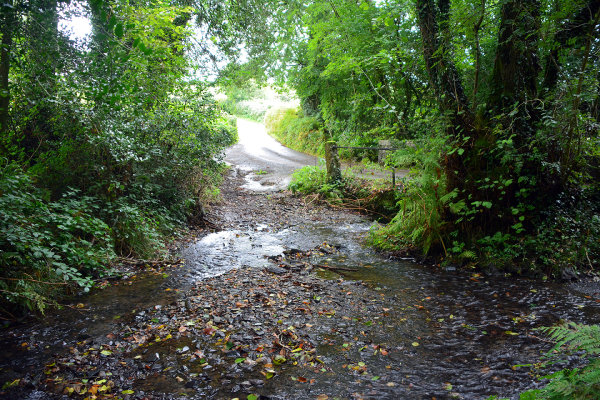 Ilsington Ford