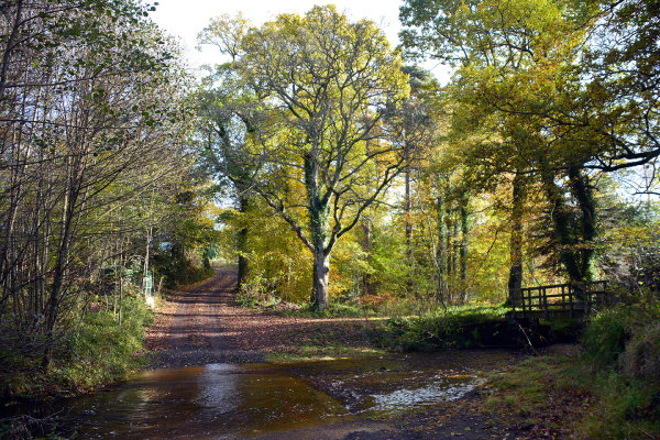 Twizell Ford 1