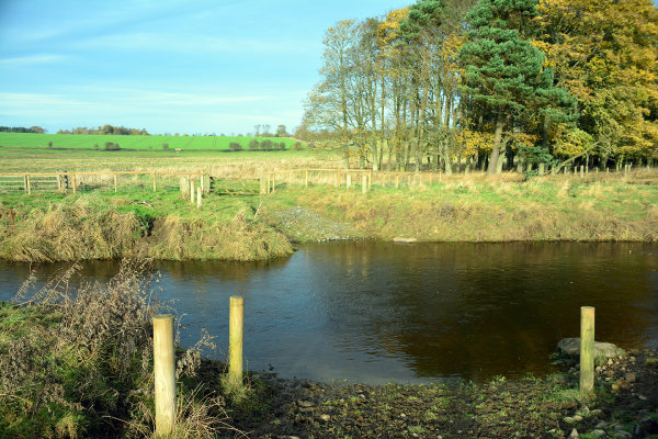 River Wansbeck Ford