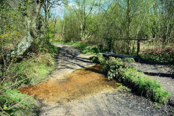 Burton Common Ford 2