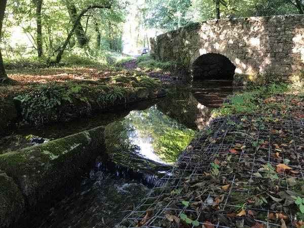 Gidley Bridge Ford