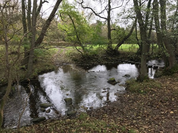 Waskerley Beck Ford 1