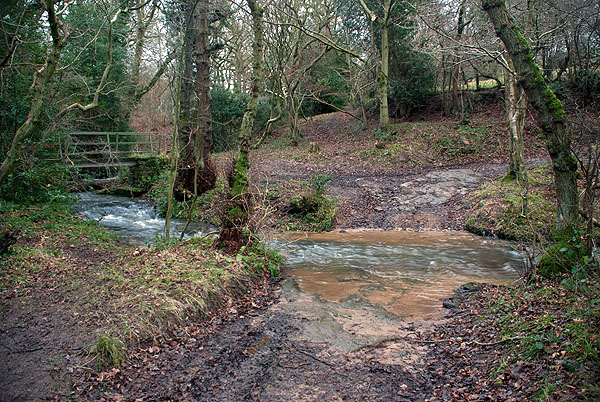 Scaling Beck Ford 1