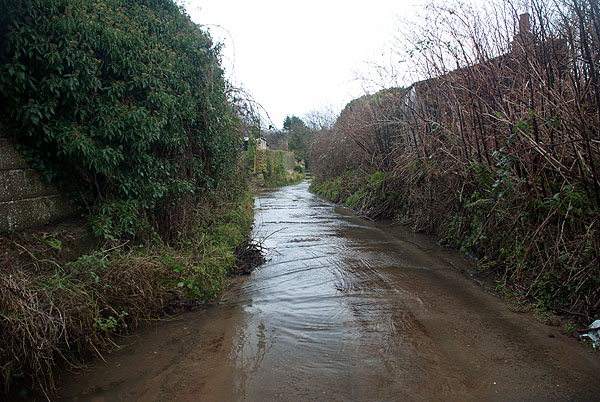 Water Lane Ford, Ruswarp