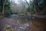 Littlebeck Ford 4