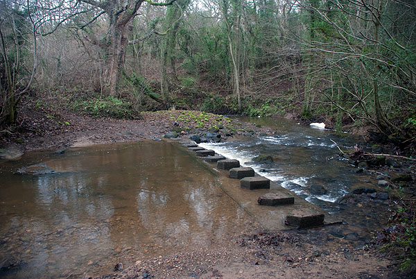 Littlebeck Ford 5