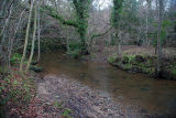 Littlebeck Ford 6