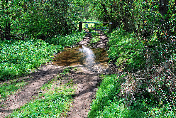 Bridleway Ford at Benniworth Haven