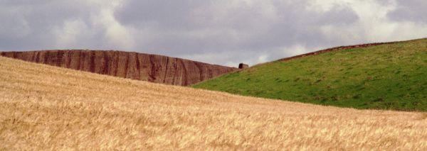 Farmland - Whinnyfold road