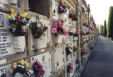 Cemetery, Bologna