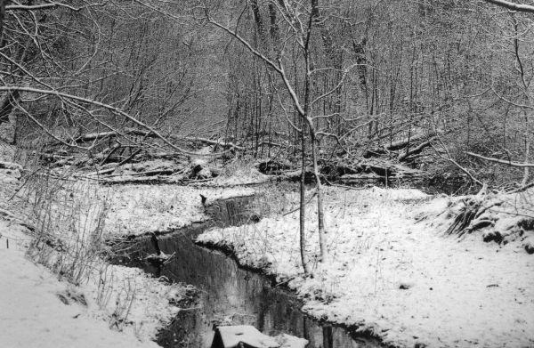 Deeside in winter