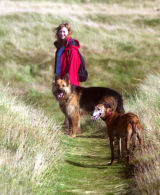 With Mistress and Zena his whippet pal