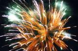 Fireworks over Duthie Park