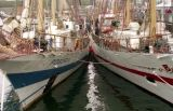Visit of Tall Ships, Aberdeen harbour