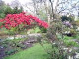 Cruickshank Gardens