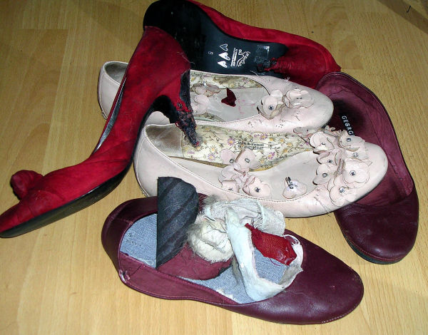 Chewed shoes