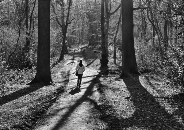 2nd Place Long Shadows by Kelvin Townsend