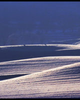 3rd Place Undulating fields by Peggy Pics