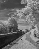 Canal at Aylestone Pete Swanson Commended