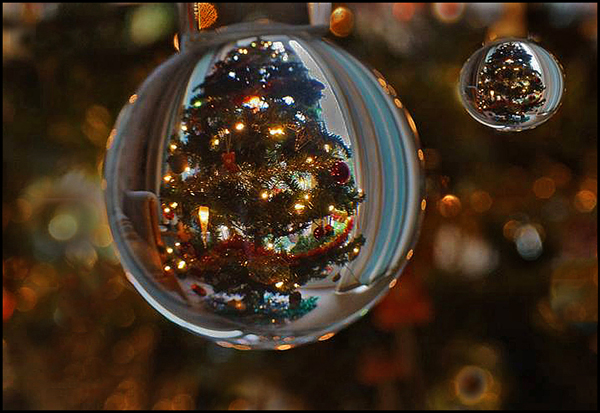 Christmas Through a Crystal Ball Commended John Walters
