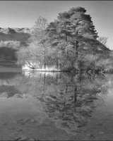 Commended Rydal Water by Peter Lucas