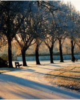 Early one frosty morning Abbey Park Second John Walters