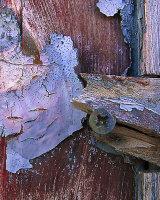 HC Face at the Door by John Bollands