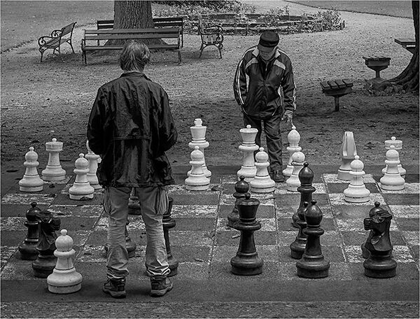 Opening Gambit by Clive Pearson