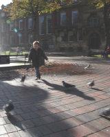 Pigeon Chase Derek Walker Commended