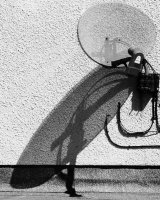 Sky Dish Insect John Walters Commended
