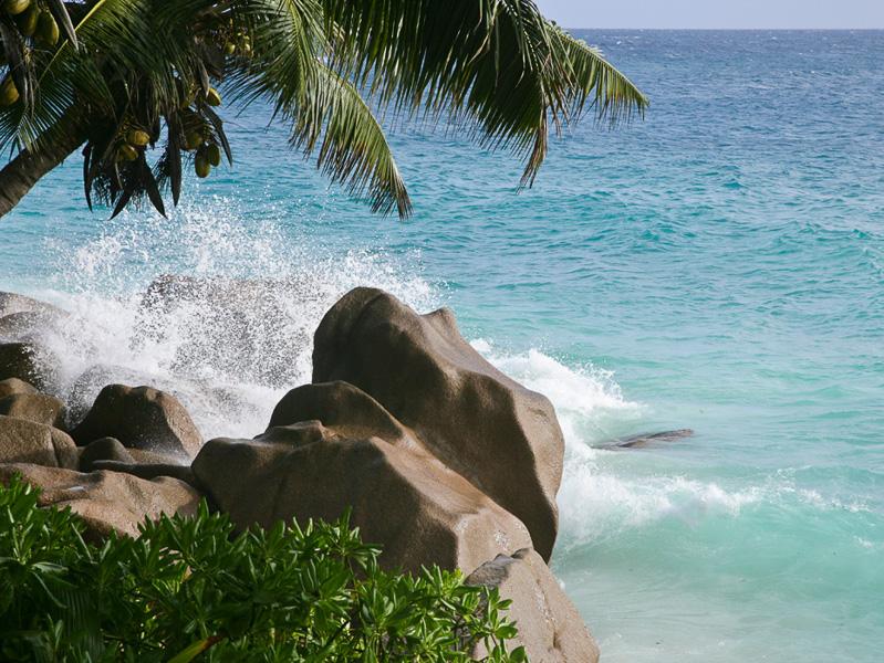 Happy tropics, Seychelles