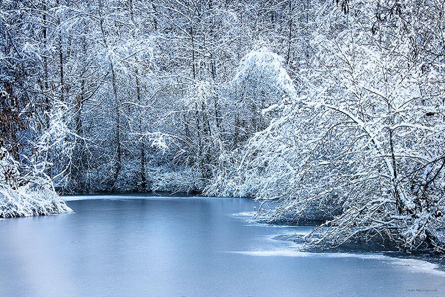 Etang gelé, France