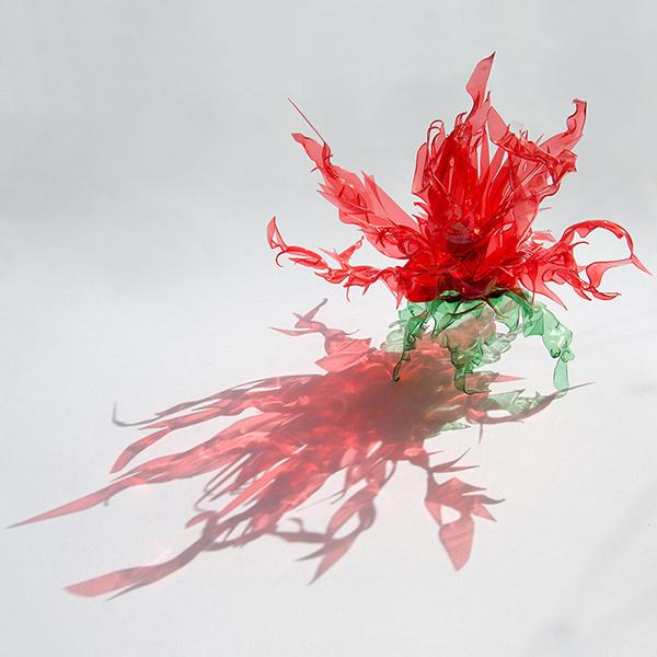 Les fleurs de feu (1)