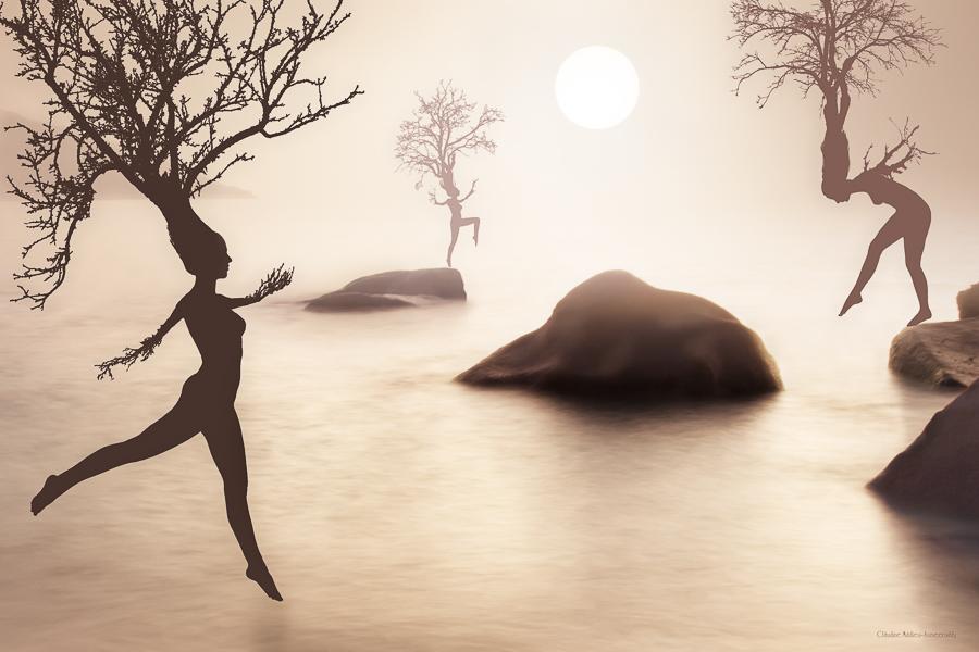 Femmes arbres, <em> Tree wonen</em>
