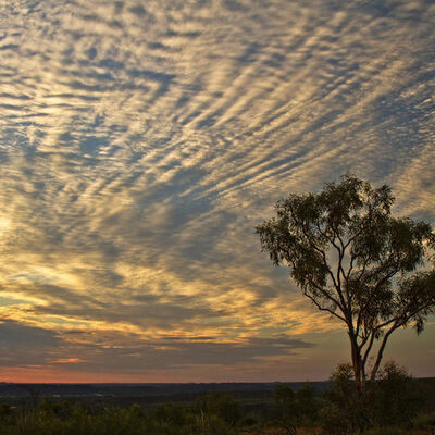 Outback Sunset-©Kim Pilkington (1st)